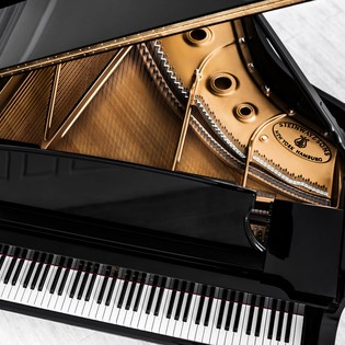 pianos fl gel klaviere in hamburg kaufen steinway. Black Bedroom Furniture Sets. Home Design Ideas