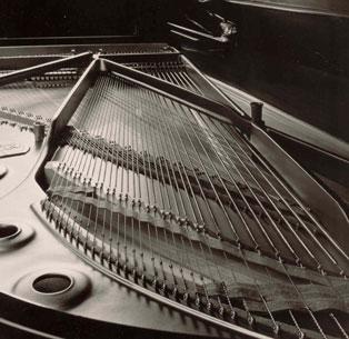stimmservice f r ihr klavier oder fl gel pianos in m nster. Black Bedroom Furniture Sets. Home Design Ideas